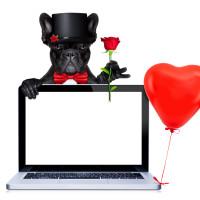 結婚式サイトを制作しよう